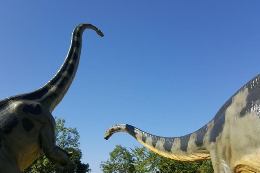 Saurier und Fossilien auf der Schwäbischen Alb