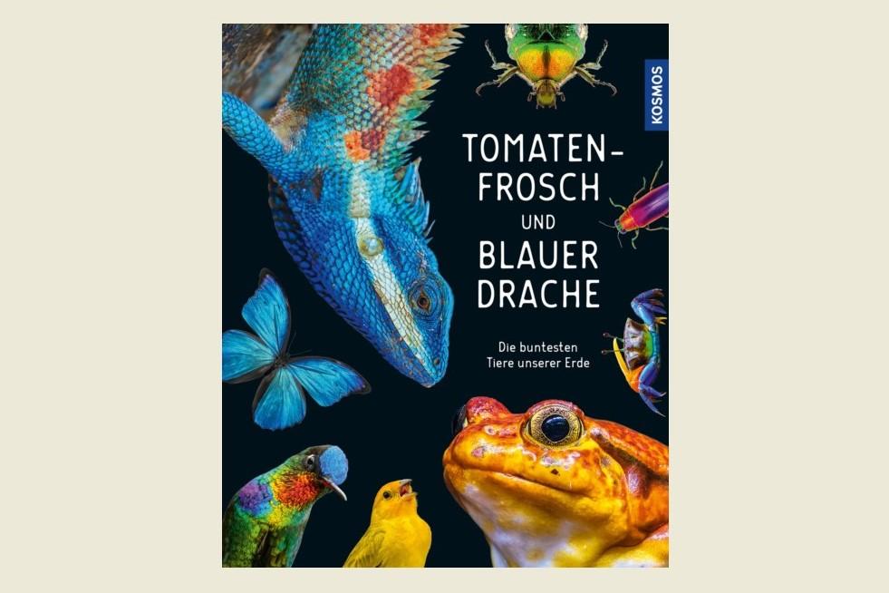Tomatenfrosch & Blauer Drache